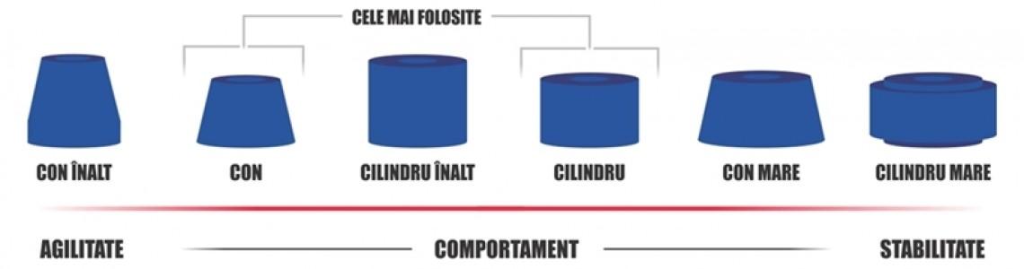Formele Bucselor